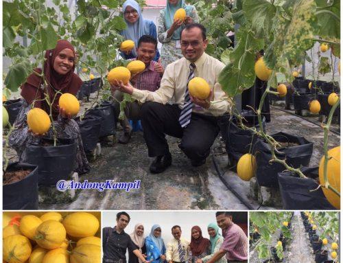 Projek Sunmelon Myagrosis USIM